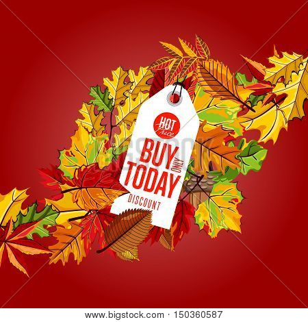 Autumn sale badge, vector illustration. Buy only today, hot price label on red background with colorful autumn leaves. White price tag with red text. Promotional discount template