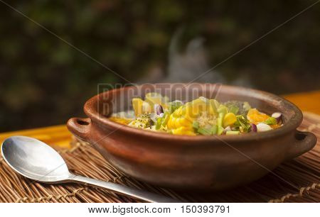 Fresh delicious home cooked soup with vegetables and steam on wood deck