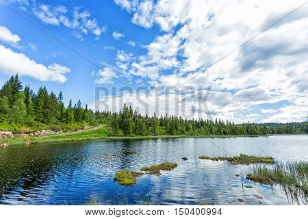 Idyllic summer landscape with clear mountain lake and forest