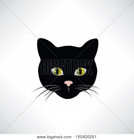 Cat. Cats face isolated vector illustration. Pet design element