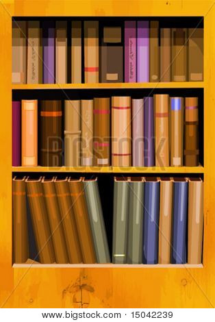 A collection of books in a bookcase in vector format.