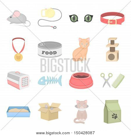 Cat equipment vector icons. Set 25 cat icons in cartoon style for web