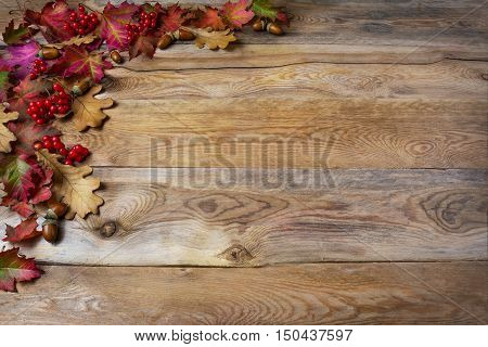 Thanksgiving greeting with berries acorn fall leaves on wooden background. Thanksgiving background with seasonal symbols. Copy space.