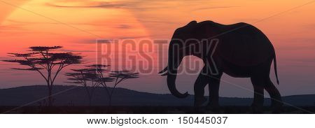 African elephant silhouette at sunset. This is a 3d render illustration