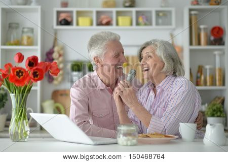 portrait  of Senior couple  and microphone and laptop