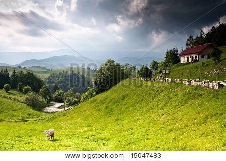 schöne ländliche Landschaft von Rumänien