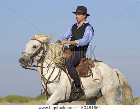 herdsman galloping on the beach whit his Camargue horse