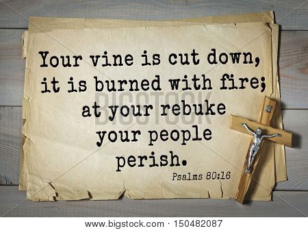 TOP-1000.  Bible verses from Psalms. Your vine is cut down, it is burned with fire; at your rebuke your people perish.