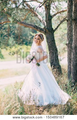 Charming Bride In Her Wedding Day