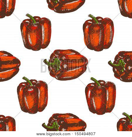 Hand drawn seamless illustration of bell peppers . Sketch style vector capsicums. Health eco food fresh farm drawing.