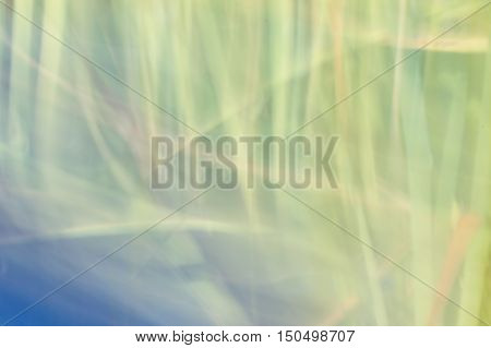 Blurred Abstract Background. Green Pastel Light.