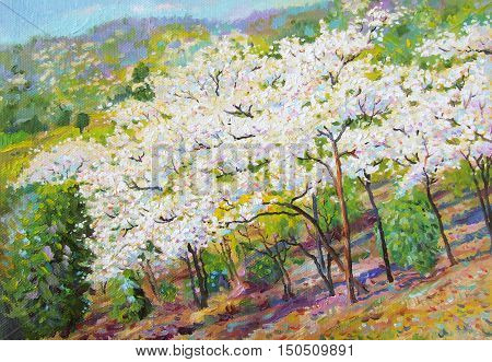 Painting oil color landscape original colorful of white flower tree and emotion in blue with cloud in the sky background