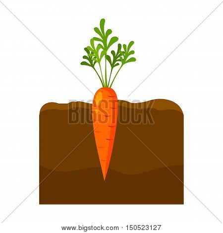 Carrot icon cartoon. Single plant icon from the big farm, garden, agriculture collection.