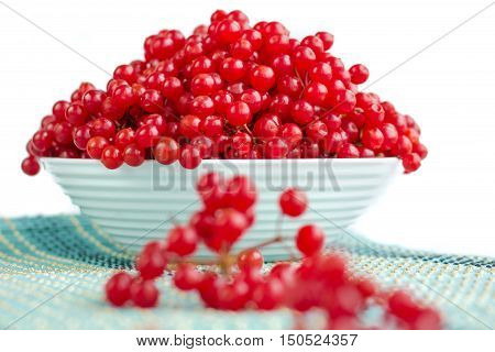 Red Berries In Plate With Cluster On Blue Underlay