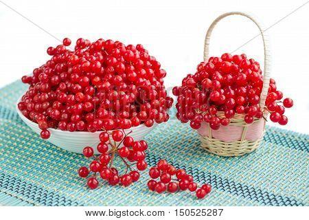 Red Viburnum Berries In Plate And Basket On Blue Underlay