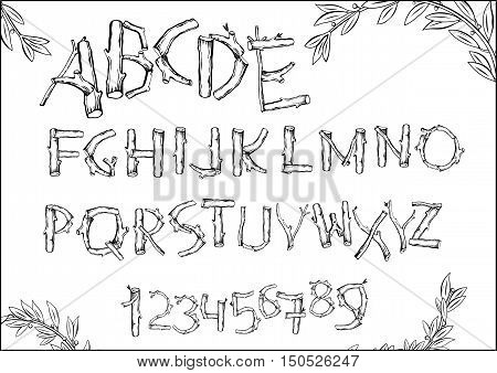 Font of woodchucks and sticks twigs leaves. Vector graphics. Numbers and letters