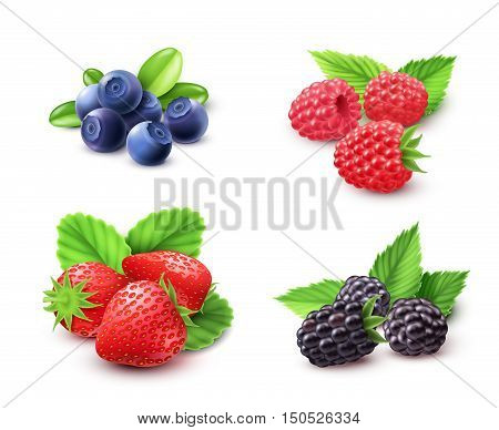 Berry realistic set with strawberry raspberry and blackberry isolated vector illustration