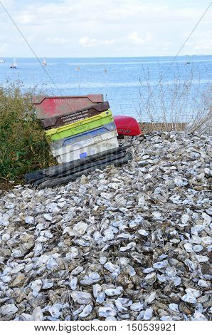 Whitstable United Kingdom - October 1 2016: Oyster shells and empty containers Whitstable beach