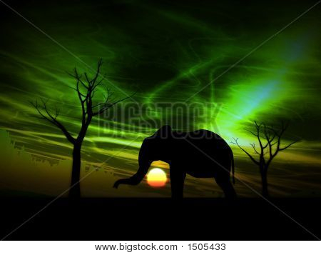Elephant Sunrise