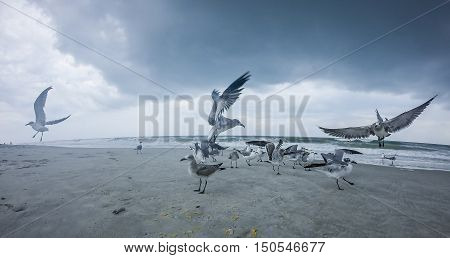 Topsail Beach North Carolina