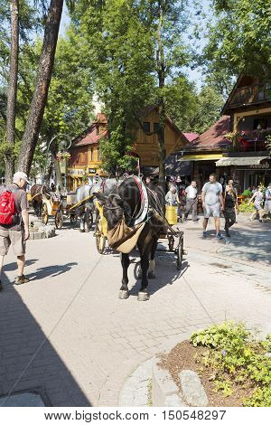 ZAKOPANE POLAND - SEPTEMBER 12 2016: Harnessed horses waits on the street Krupowki street. The rides such carriages with sightseeing are a tourist attraction.
