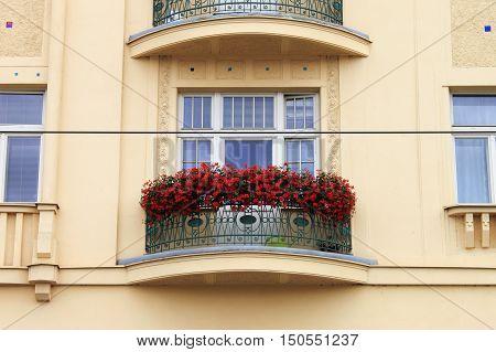Closeup of a renaissance balcony with flower pots