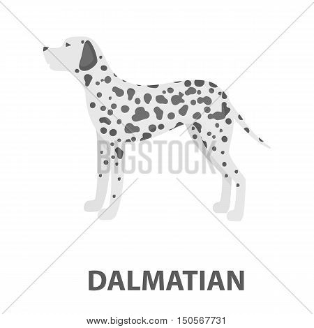 Dalmatian rastr illustration icon in cartoon design
