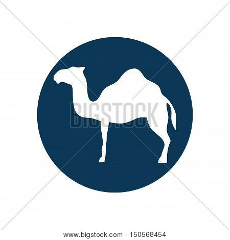 camel animal silhouette over blue circle shape. vector illustration