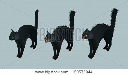 Isometric Black Cat. Set calm cat, meowing, hissing vector illustration