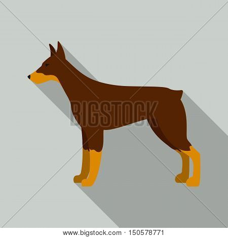 Doberman raster illustration icon in flat design