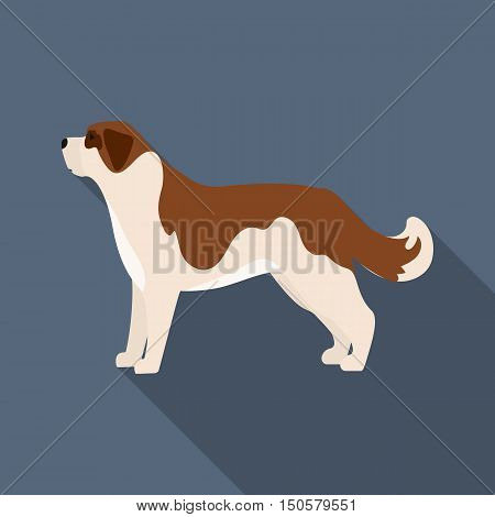 St. Bernard dog raster illustration icon in flat design