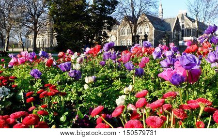 Gothic Revival Buildings and Botanic Gardens.  Christchurch New Zealand