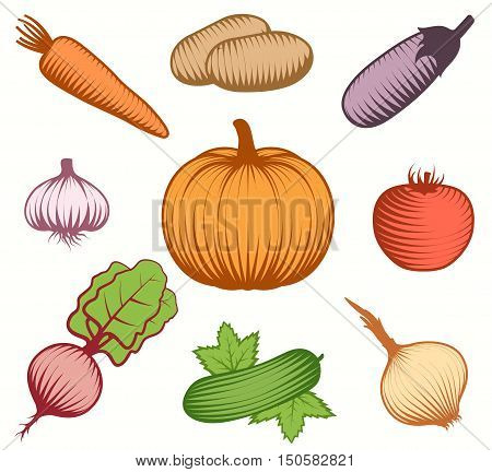 Isolated set of colorful raw vegetable food symbols on blank background in hand drawn style flat vector illustration