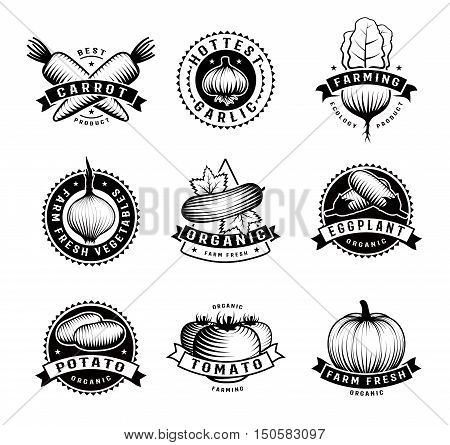 Monochromatic fresh and organic vegetable decorative emblems set in vintage style for advertising and restaurant menu vector illustration