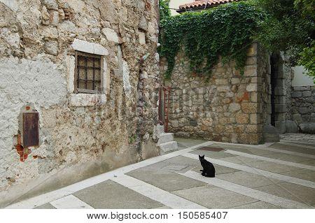 Senj Croatia - September 16 2016: old city. A small town in northern Croatia located on the Adriatic coast. The oldest parts of buildings in the old town come from the fifteenth century. Black cat sitting in the backyard.