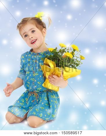 Beautiful little girl in a blue short dress. Girl kneeling with a beautiful bouquet of yellow flowers.Gentle blue Christmas background with white snowflakes abstract.