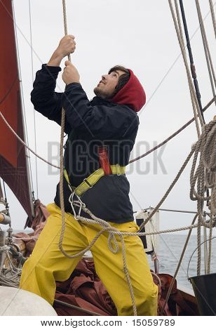 Young Sailor At Work