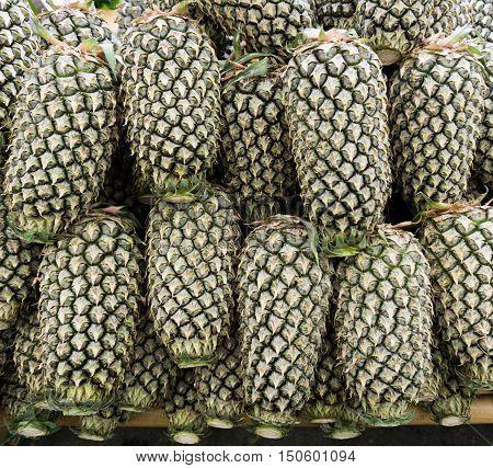 Group of pineapple fruit ,Pineapple fruit background