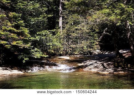 Small lake view with rock shore and forest foliage shot at Franconia Notch NH on one of the many walking/hiking paths on a bright sunny day.