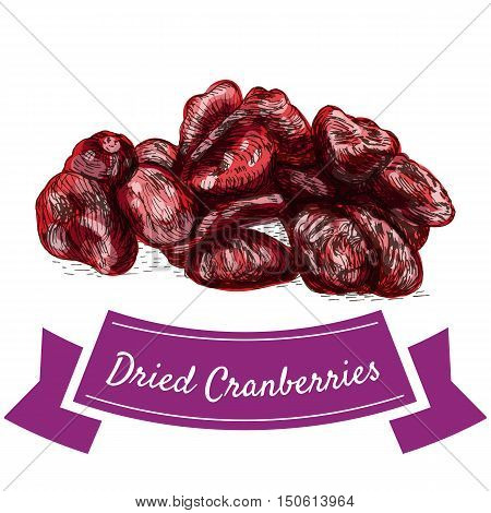 Dried cranberries colorful illustration. Vector illustration of dried cranberries.