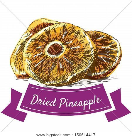 Dried pineapple colorful illustration. Vector illustration of dried pineapple.
