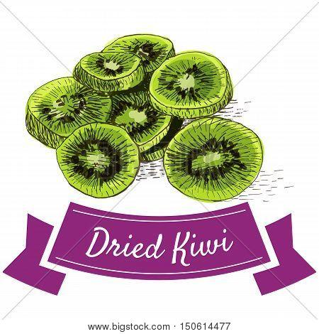 Dried kiwi colorful illustration. Vector illustration of dried kiwi.