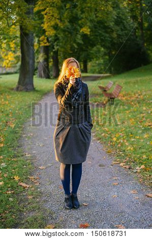 Young lady standing on path in autumnal park and hiding face behind bunch of fallen leaves