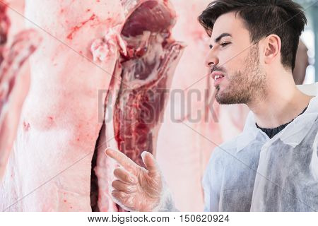 Veterinary at meat inspection in slaughterhouse or butchery