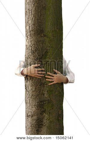 A man hugging a tree