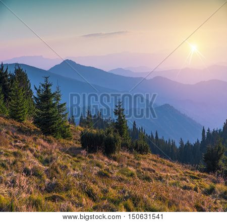 Mountain ranges of Ukraine with high alpine