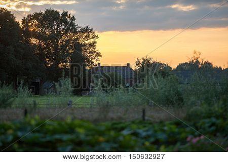 Farmhouse between dense vegetation at sunset. Geesteren. Achterhoek. Gelderland. The Netherlands.