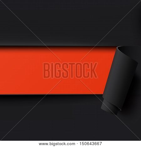 Black torn paper background with red space for text. Template for brochure, poster or flyer. Vector illustration.