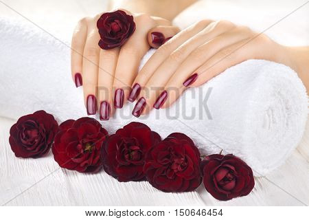 beautiful vinous manicure with rose flowers. spa