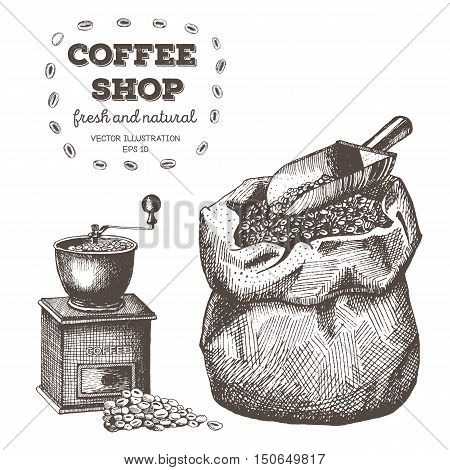 Coffee set with coffee grinder mill beans bag of coffee scoop. Hand drawn vector illustration in sketch style. Ink drawn.